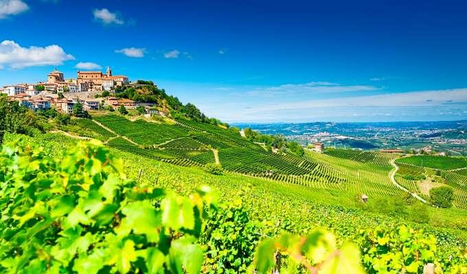 Piemonte - vin, sjokolade og trøfler