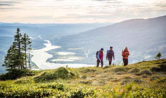 Vandring runt Åreskutan