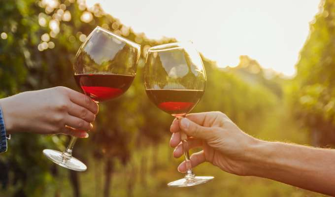 Kultur og vin i Bordeaux