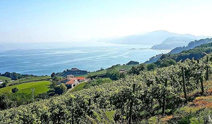 Guldkant: Vandring i Baskien
