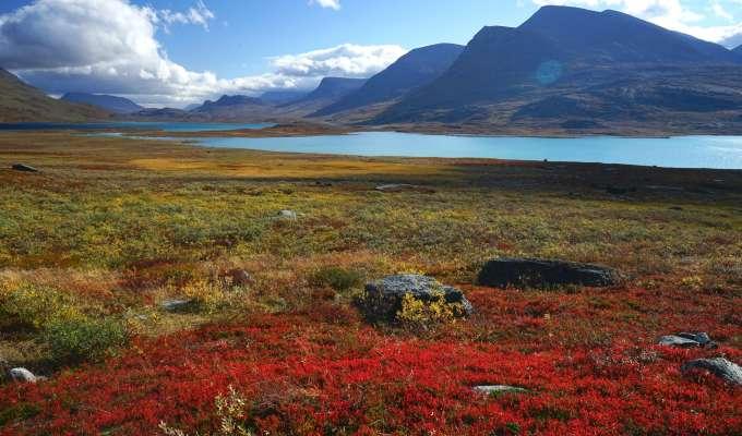Vandring i Lappland