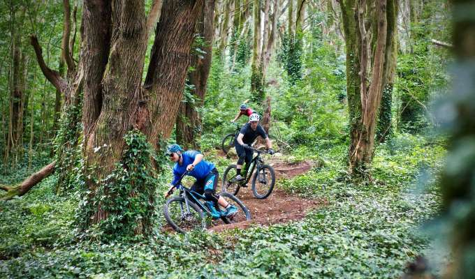 Mountainbike i Sintra