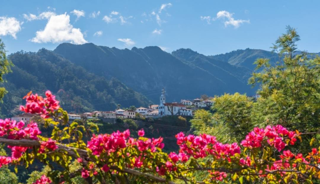 ...men fjell og blomster i skjønn forening finner vi også på Madeira.