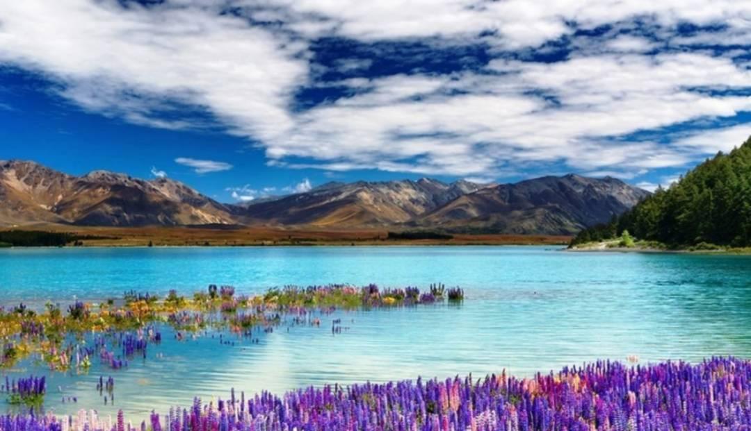 New Zealand vil ønske oss velkommen sørover etterhvert....