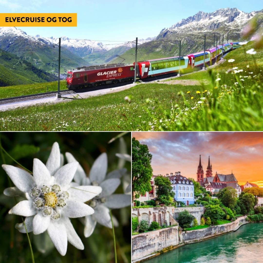 Elvecruise på Rhinen med Glacier Express