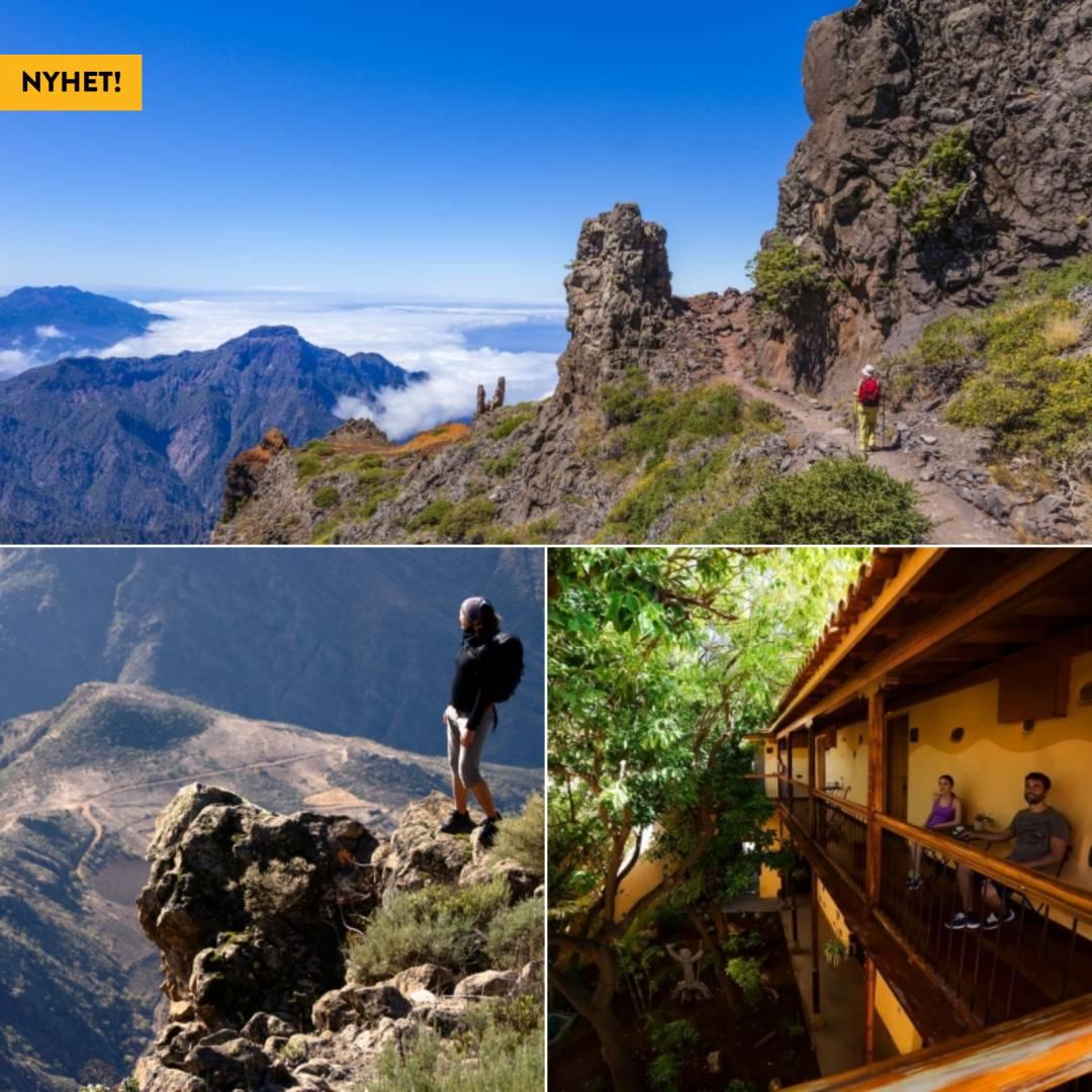Genuina Gran Canaria i full frihet